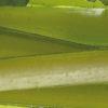 La fértil ribera del Ebro