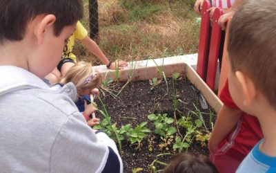 Huertos escolares en las comarcas de Valdejalón y Cariñena