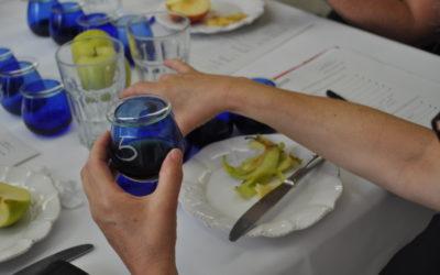 Sesión de Cata aceite de oliva Virgen Extra D.O. Bajo Aragón en Alcañiz