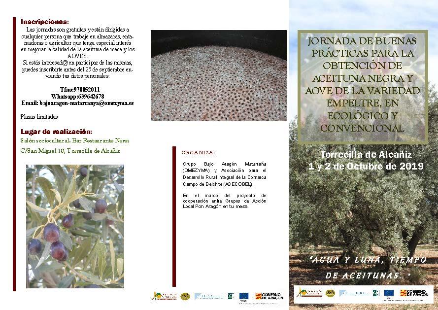 Jornadas sobre la obtención de la aceituna negra y AOVE empeltre en Torrecilla de Alcañiz