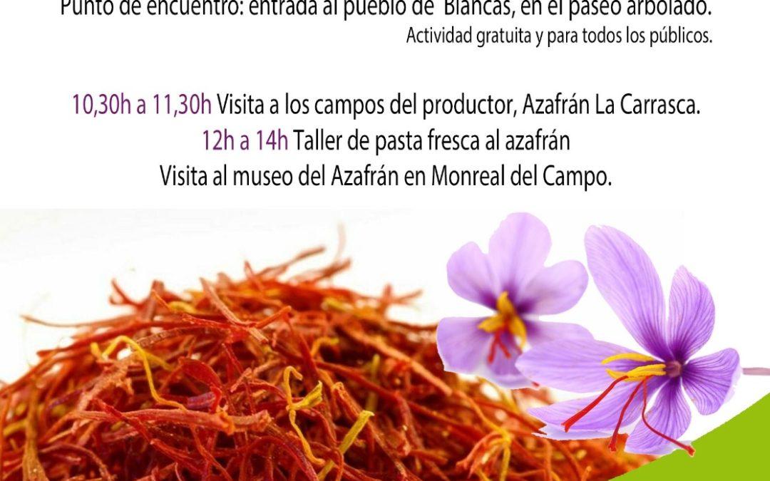 Agroexperiencia en Blancas, Azafrán La Carrasca, Mercado Norte Teruel