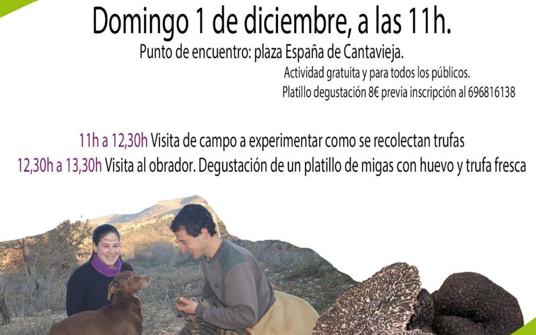 Agroexperiencia, del mercado agroecológico y local norte Teruel, dedicada a la «Trufa»