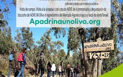 Agroexperiencia en Oliete, domingo 26 Enero Apadrina un Olivo