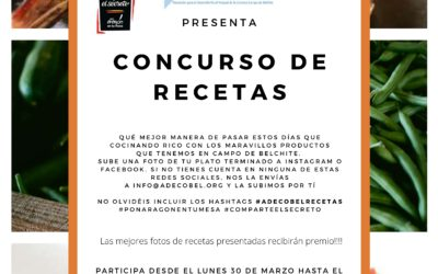 Concurso de Recetas Campo de Belchite