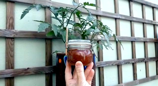 SALSeco Salsa de tomate seco