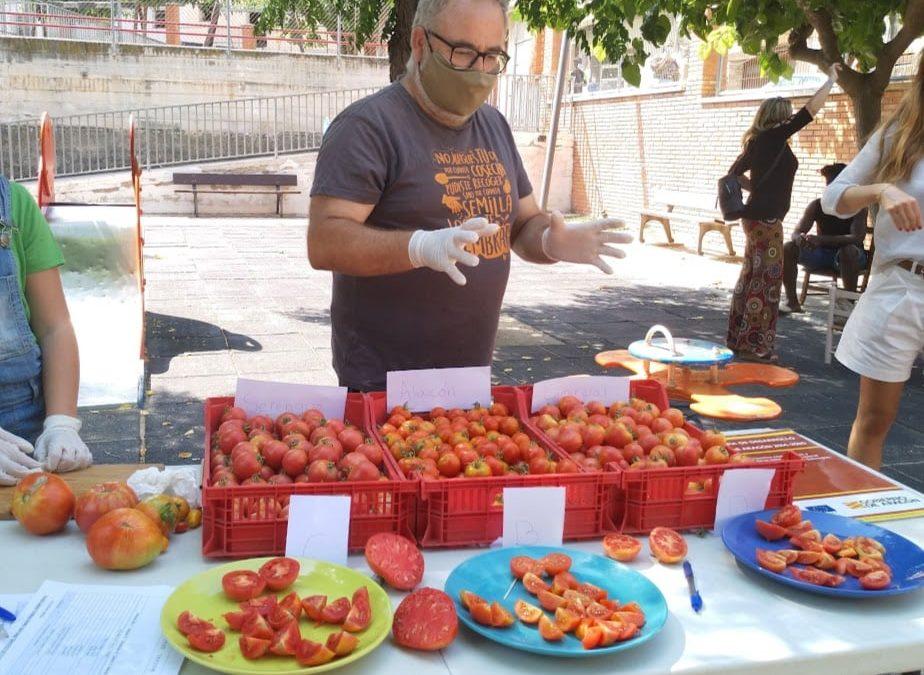 Mercado en Alcañiz – Local y Agroecológico Bajo Aragón –  7 de Octubre