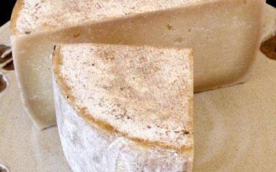 Rollitos de pasta filo con queso de cabra y ciruela al tomillo